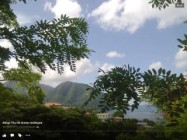 Dominica Island Long Term rentals in , vdfv
