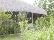 Brazil Property for rent in State of Ceara-CE, Parajuru