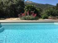 France Vacation rentals in Corsica, Monticello