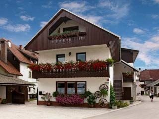 Slovenia Vacation rentals in Upper Carniola Region, Bled